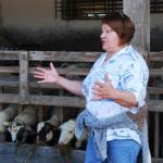 O biofarmu v Pružine sa stará a zveľaďuje ju Oľga Apoleníková. Vyštudovala síce odbor strojárstvo, ale zlákali ju ovce. Začínala ako dojička kráv. Po zániku jej zamestnania začala s chovom hovädzieho dobytka a postupne prešla na chov oviec. Dnes je jedna z najlepších.