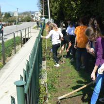 Ešte zopár sadeníc a živý plot bude na celom ekoihrisku.